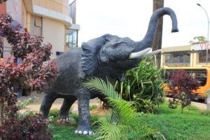 Walking Around Kampala